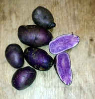 Purple_potatoes_all_blue